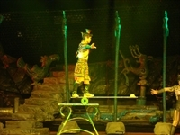 Chinese_Acrobat_Show_5824