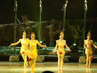 Chinese_Acrobat_Show_5854