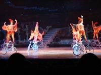 Chinese_Acrobat_Show_6010