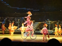 Chinese_Acrobat_Show_6049